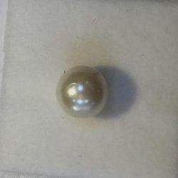 SouthSea Pearl 2.5 Crt