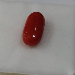 Coral 2.4 Crt